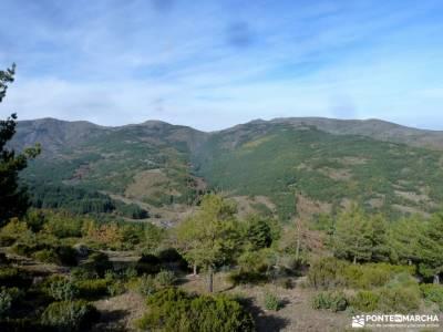 Hayedo Tejera Negra; rutas hoces del duraton; los galayos gredos floración valle del jerte fotos pi